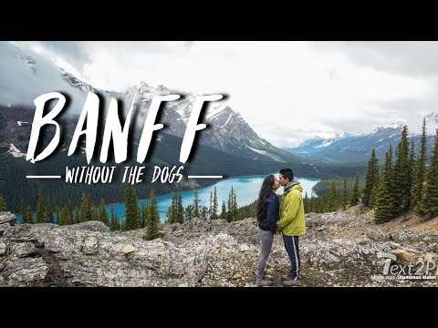 BANFF without the DOGS