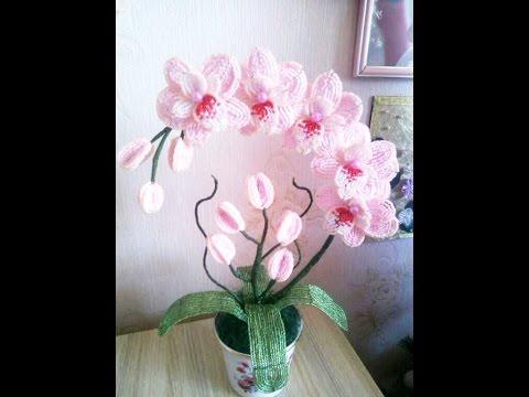 Орхидеи. Топ 20. Июнь - октябрь 2016