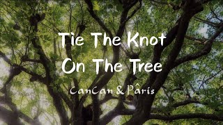 Tie The Knot On The Tree | CanCan&Pâris Love Story |