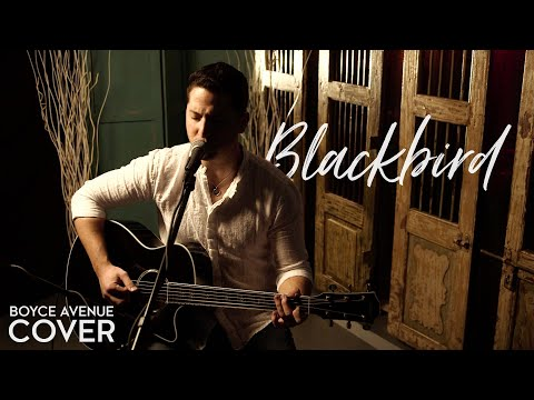 The Beatles  Blackbird Boyce Avenue acoustic  on  & Apple