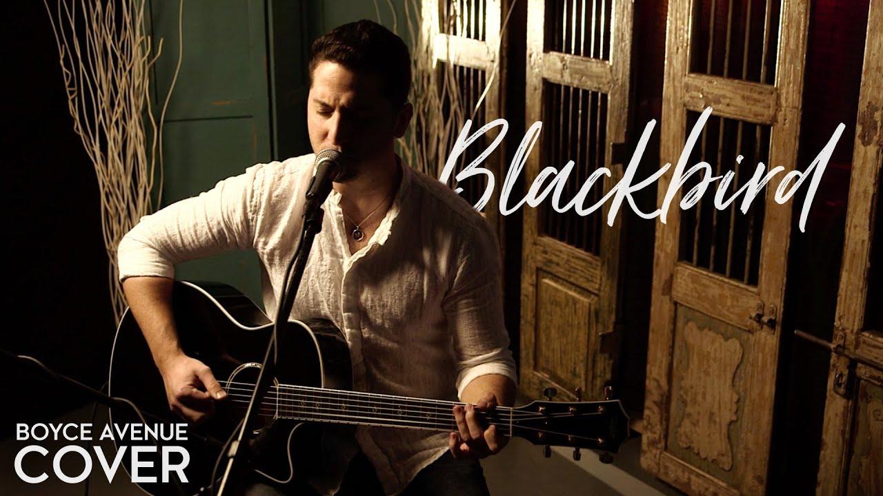 the beatles blackbird boyce avenue acoustic cover on apple