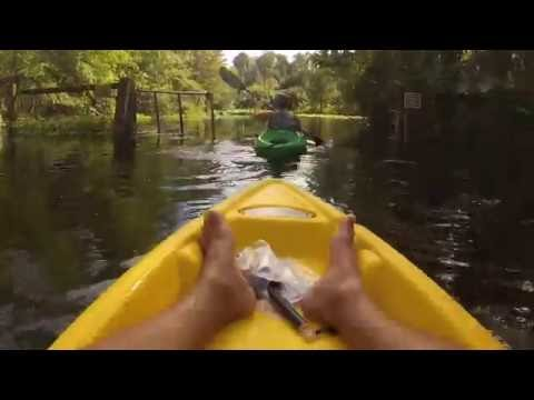 Silver River Kayaking in Silver Springs, Florida