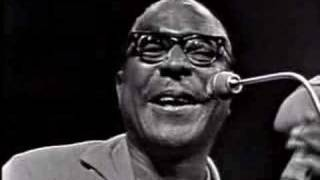 Sonny Terry - Hooray, Hooray, These Women Is Killin