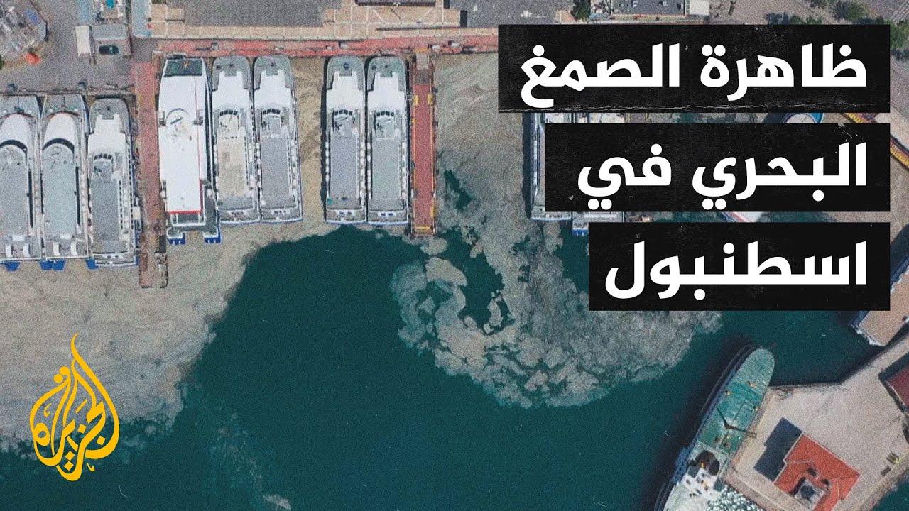 ظاهرة الصمغ البحري في سواحل عدد من المدن التركية  - نشر قبل 44 دقيقة