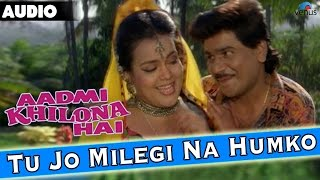 Download Aadmi Khilona Hai : Tu Jo Milegi Na Humko Full Audio Song With Lyrics | Govinda, Meenakshi Seshadri MP3 song and Music Video