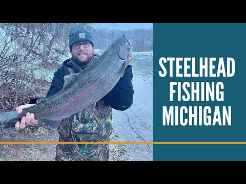 Steelhead Fishing Michigan / Michigan Fishing / Tippy Dam / Manistee River Steelhead & Brown Trout