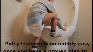 Potty training - How to potty training