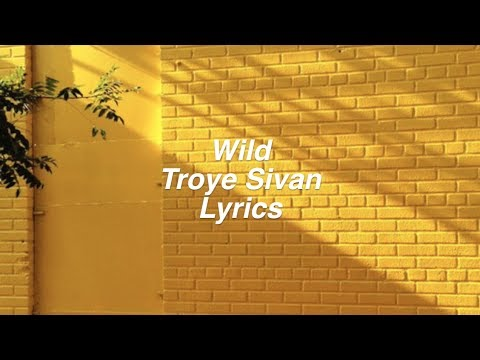 Wild || Troye Sivan Lyrics