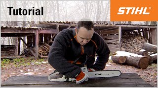 Video Tutorial On Chain Saws 3 - Checking The Guide Bar And The Saw Chain (ms 241)