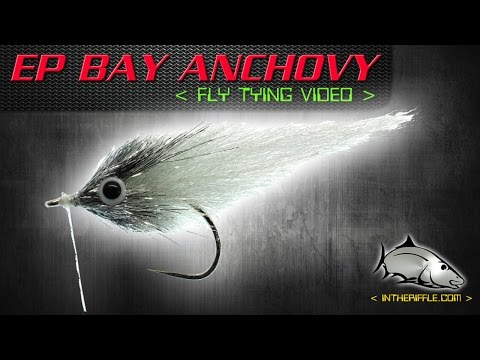 EP Bay Anchovy Fly Tying Video Instructions - Enrico Puglisi Fly Pattern