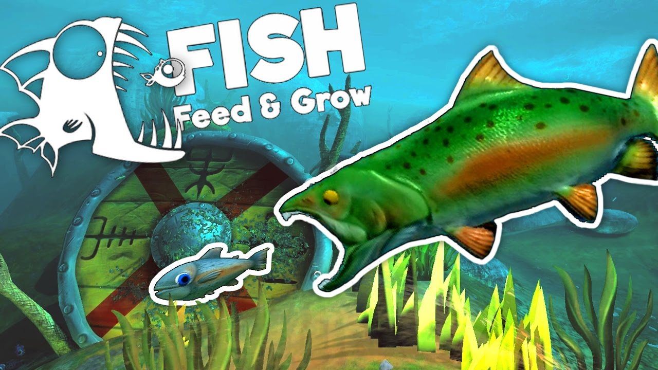 Amazing new river salmon feed and grow fish gameplay for Fed and grow fish