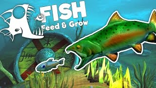 amazing new river salmon feed and grow fish gameplay 0 7 ocean update new salmon and baracuda