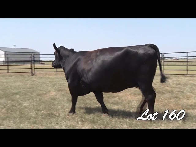 Pollard Farms Lot 160