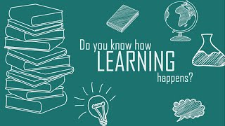 How Learning Happens?