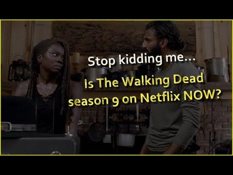 How To Watch The Walking Dead Season 9 On Netflix?