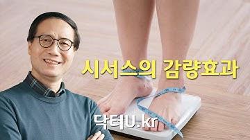 시서스의 감량효과