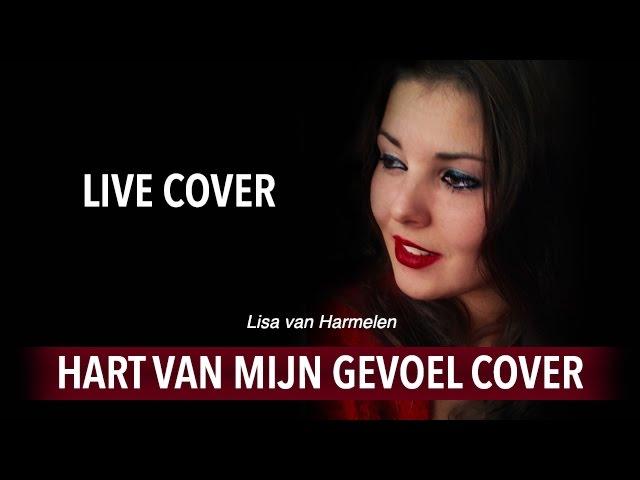 De Kast Hart Van Mijn Gevoel Live Cover Dutch Chords