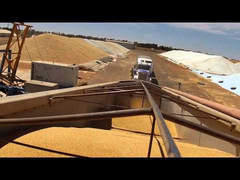 Wolter Farms 2014 Australian Harvest