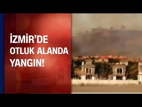İzmir'de otluk alanda yangın çıktı