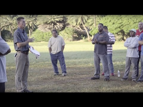 ProService Hawaii Customer Testimonials - Seal Masters