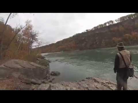 Trout fishing the lower niagara river youtube for Lower niagara river fishing report