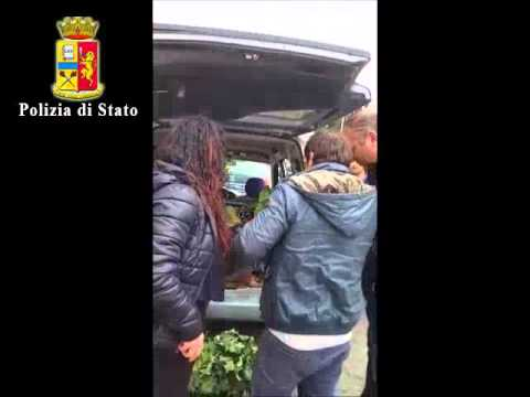 video sequestro verdura