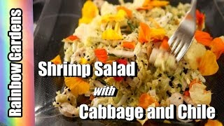 EASY! Shrimp  Salad with and Cabbage & Chile  + How to Harvest Cabbage