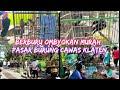 Berburu Ombyokan Murah Dipasar Burung Cawas Klaten Harga Burung Terbaru   Mp3 - Mp4 Download