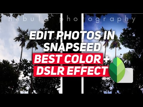 How To Edit Photo Like DSLR? | Best Colour Effect | Snapseed Tutorial | Just 2 Steps |