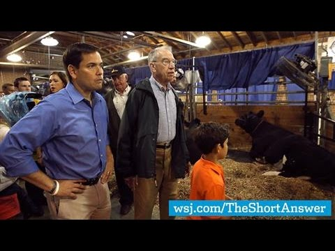 Rubio Power Walks, Avoids Trump Talk at Iowa Fair