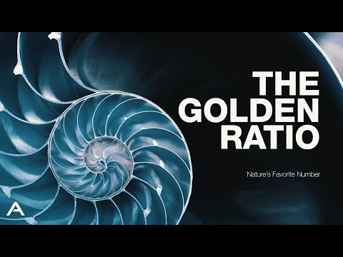 The Golden Ratio: Nature's Favorite Number