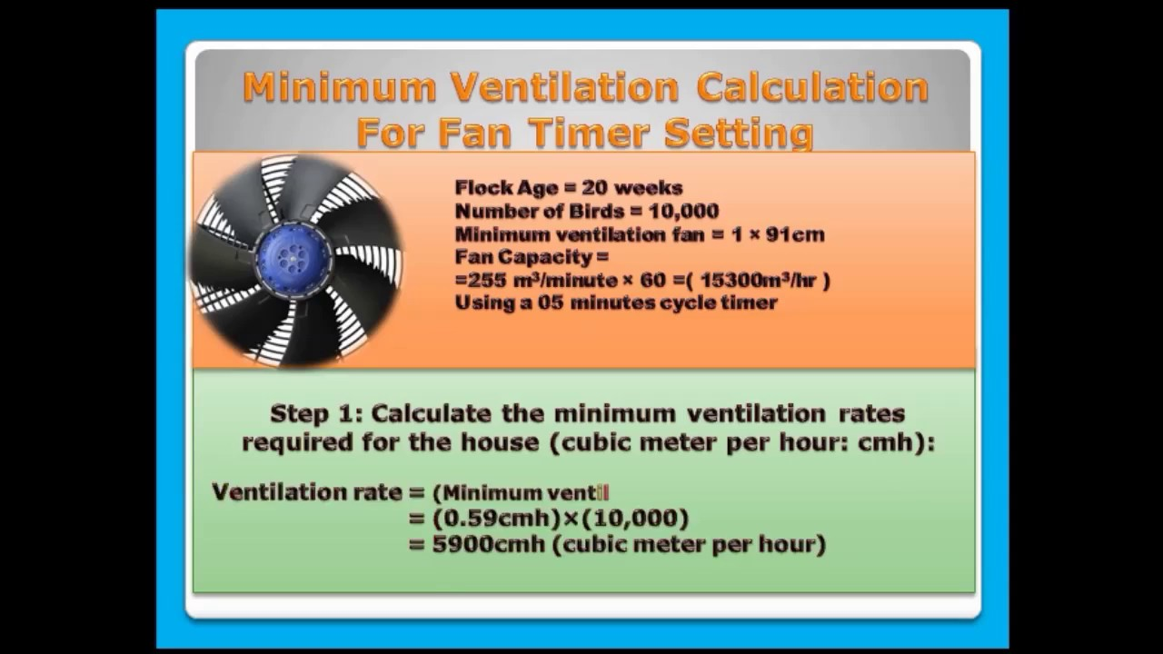 Ventilation For Chickens : Calculation of ventilation modern poultry house youtube