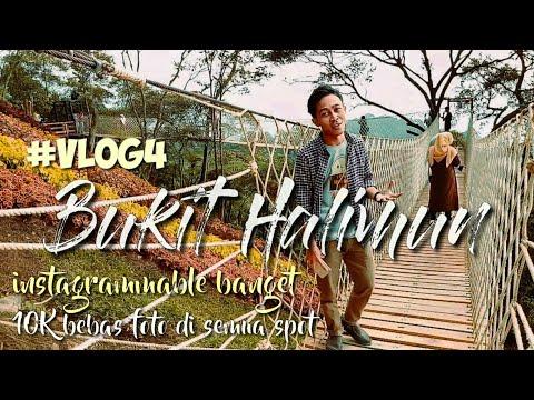 bukit-halimun-(objek-wisata-happening-soon-di-bogor)-#-vlog4