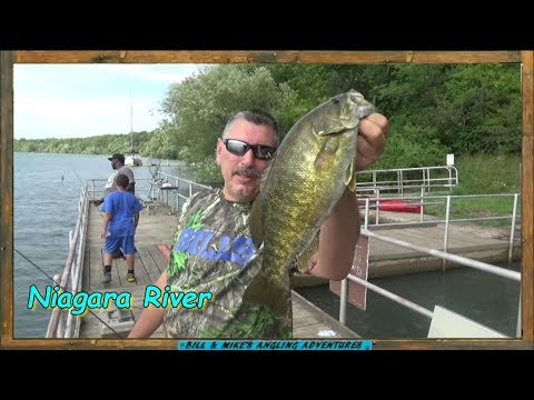 Summer Shore Fishing - Lower Niagara River