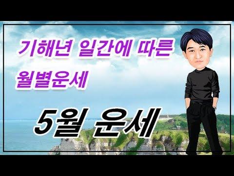 기해년 기사월(5월) 운세