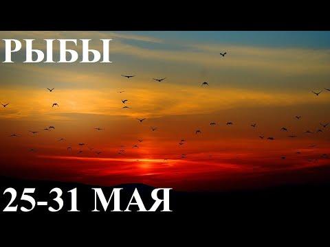 РЫБЫ 25-31 МАЯ ТАРО ГОРОСКОП ОТ ЛИС ФИЗАЛИС