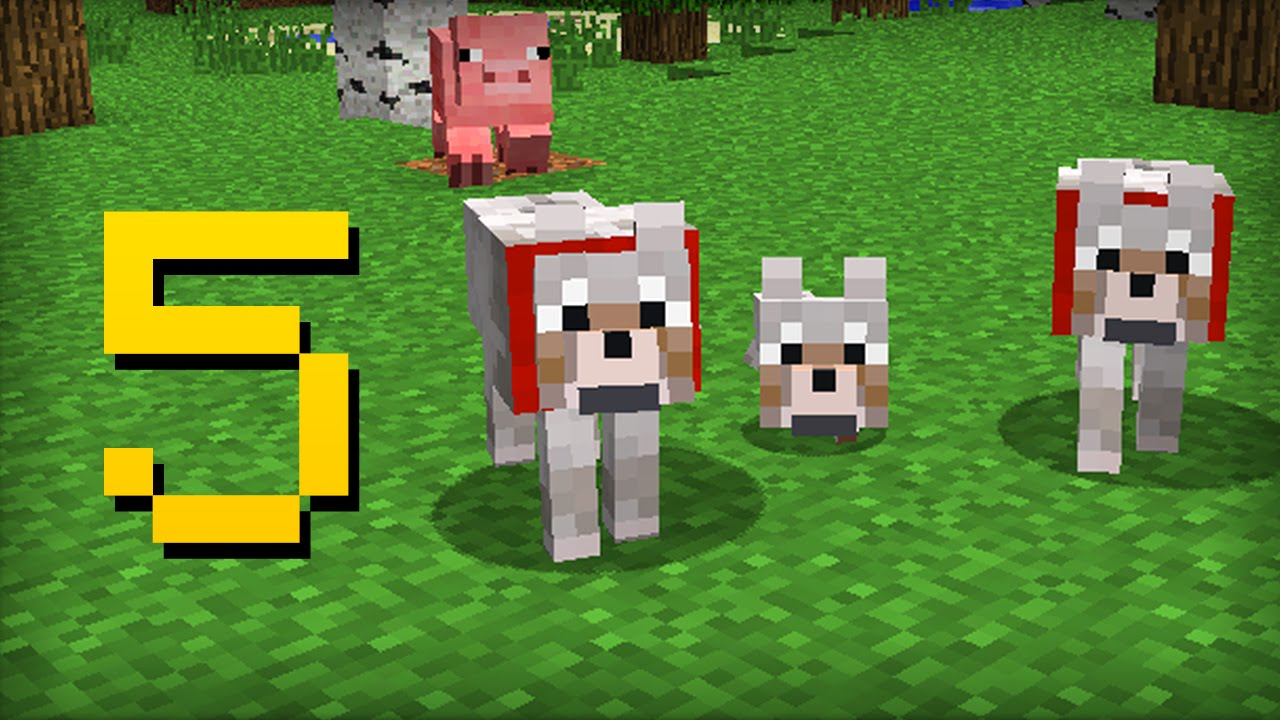 ✔ Minecraft - 5 Things You Didn't Know About the Wolf