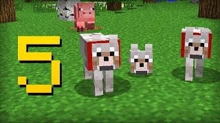 ✔ Minecraft - 5 Things You Didn