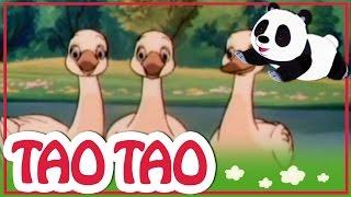 Tao Tao - 25 - במתנה של הדגים