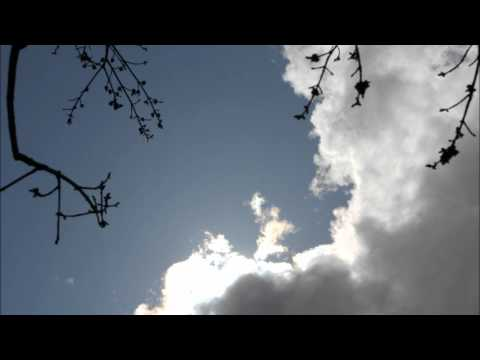 Memory (Cats) - Sung by Suzan Erens