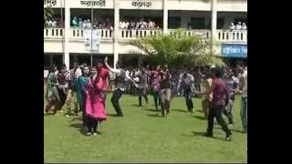 T20 World Cup flash mob by Lakshmipur Govt. University College