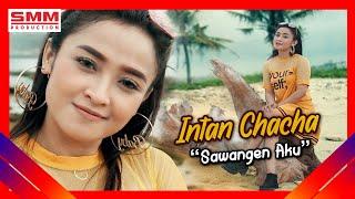 Download Lagu Intan Chacha - Sawangen Aku (OFFICIAL VIDEO) mp3
