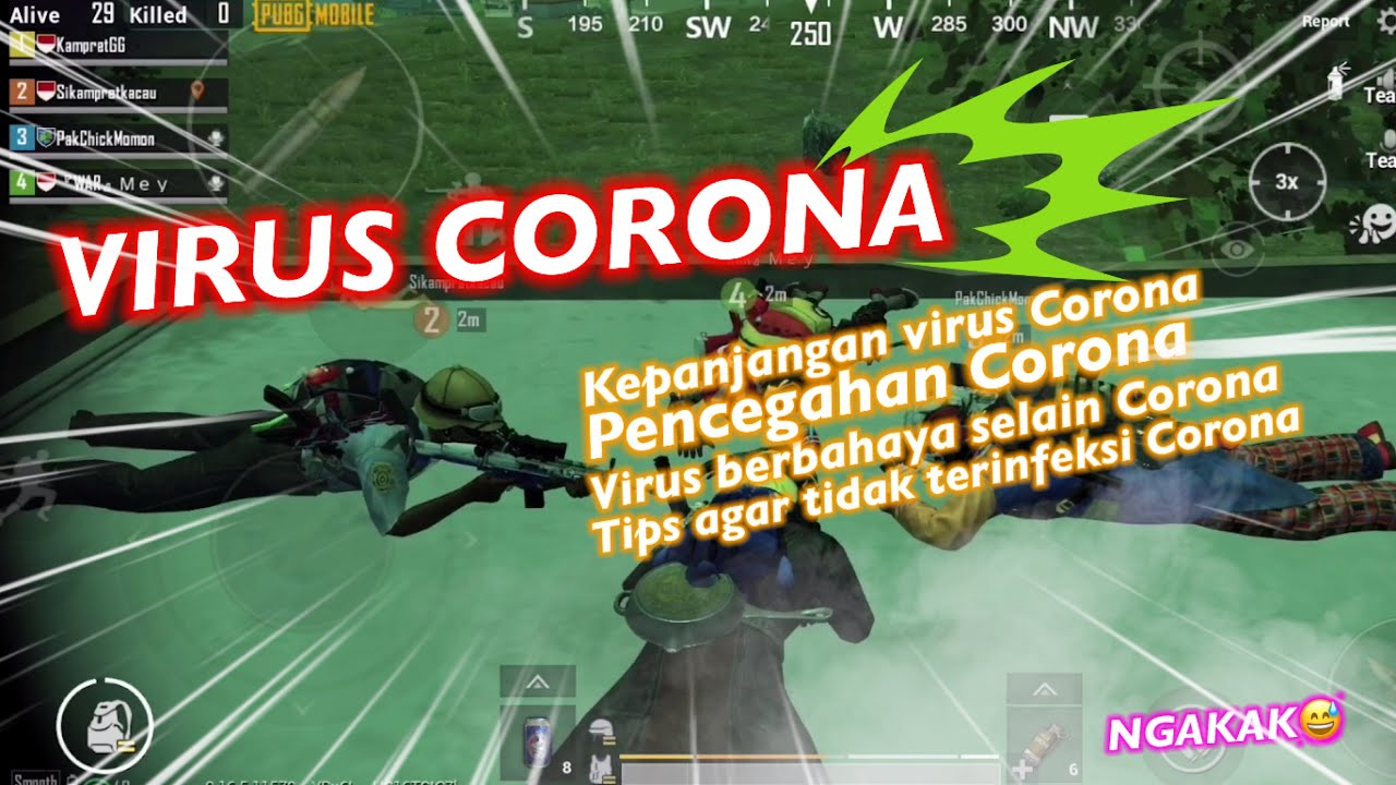 VIRUS CORONA VERSI SI MOMON - PUBG MOBILE INDONESIA
