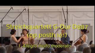 Schubert Quartet in G Major D887 I  Allegro molto moderato