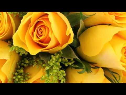 Желтые розы. Язык цветов роз. Релакс ТВ5