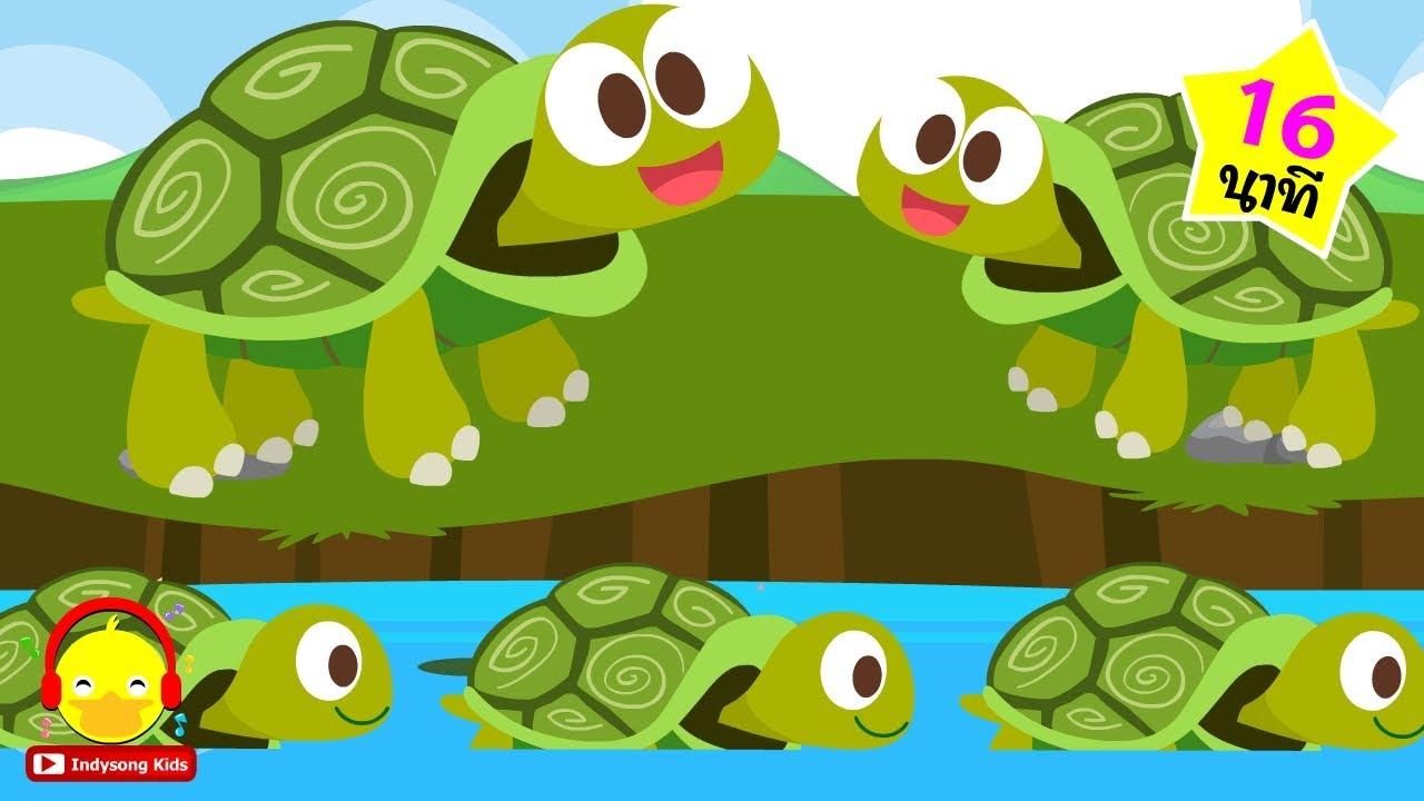 เพลงเต่า4ขา แบบใหม่ ? New Turtle 4 Leg song ♫ เพลงเด็กอนุบาล indysong kids