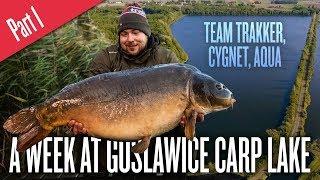 Carp Fishing In Poland - A Week at Goslawice Carp Lake - Part 1 (EU Subtitles Available)