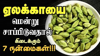 Health Benefits of Eating Cardamom Tamil – elakai/yelakai – Health Tips