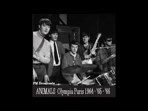 The Animals - Roadrunner (Live, Olympia, Paris - December 15th, 1964)