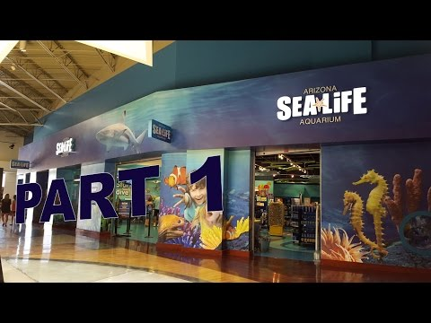 SEALIFE Aquarium Arizona - Tempe, Arizona Part 1
